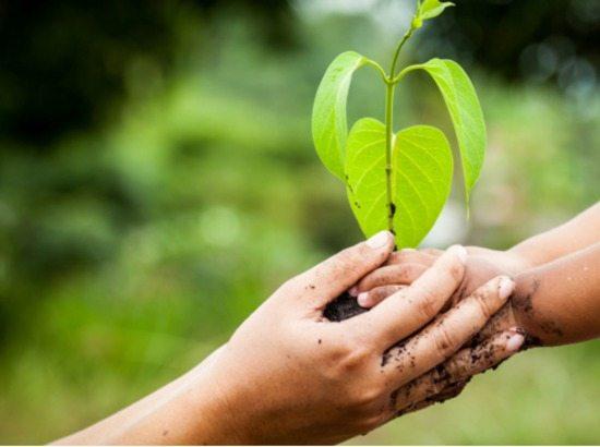 Duurzaam en verantwoord